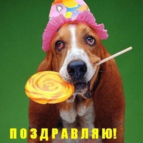 http://bestkartinki.my1.ru/_ph/46/2/546808867.jpg